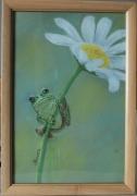 "painting animaux grenouille animaux nature fleur : ""Rainette"""