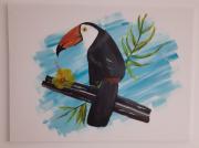 tableau animaux : Le toucan