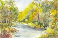 La rivière 5