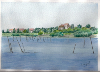 Maguelone 1
