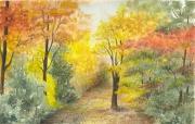 tableau paysages foret arbres automne nature : Sous bois