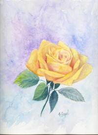 La rose jaune