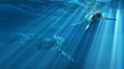 art numerique animaux ocean animaux reptiles jurassique : Liopleurodon en chasse