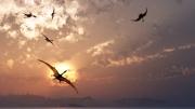tableau animaux paysage lagune jurassique pterosaures : Lagune