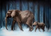 tableau animaux elephant aerographie animaux elephanto : La marche glaciale