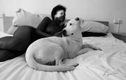photo scene de genre femme chien animal : Anima