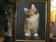 tableau animaux chat animal petit : petit chat