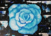 tableau fleurs : Rose d'Hiver