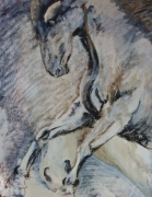 tableau animaux cheval animaux animal pigments : Cheval N°7