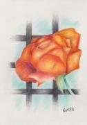 tableau fleurs fleur barreaux plante pivoine : Entre Rose et Pivoine, un moment de douceur