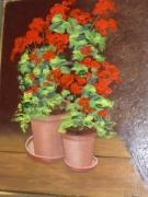 tableau fleurs couleur : Géraniums