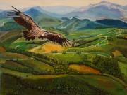 tableau paysages pays basque bearn vautour : Vautour