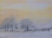tableau paysages arbres hiver brume paysage : arbre dans l'hiver