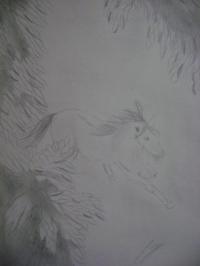 cheval (vue des arbres)