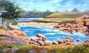 tableau paysages bretagne rochers : Côte rose