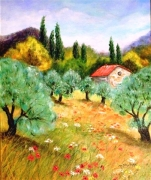 tableau paysages paysage provence oliviers : Provence