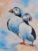 tableau animaux arctique banquise oiseaux : Les Macareux