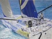 tableau marine : Francois GABART