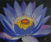 tableau fleurs lotus fleur bleu violet : lotus
