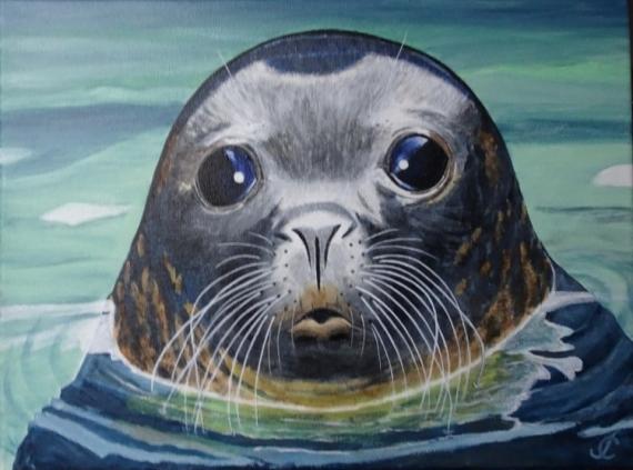 TABLEAU PEINTURE phoque regard mer Bretagne Animaux Acrylique  - Phoque