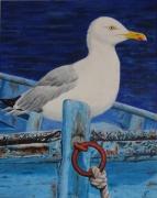 tableau marine goeland mouette vieux bateau : Goeland capitaine de bateau