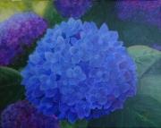 tableau fleurs hortensia fleurs bleu : Hortensia