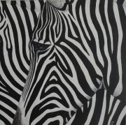 tableau animaux zebre animal afrique : Zèbre