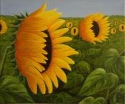 tableau fleurs tournesols fleurs jaune : Tournesols
