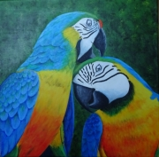 tableau animaux perroquets ara oiseaux exotique : Aras