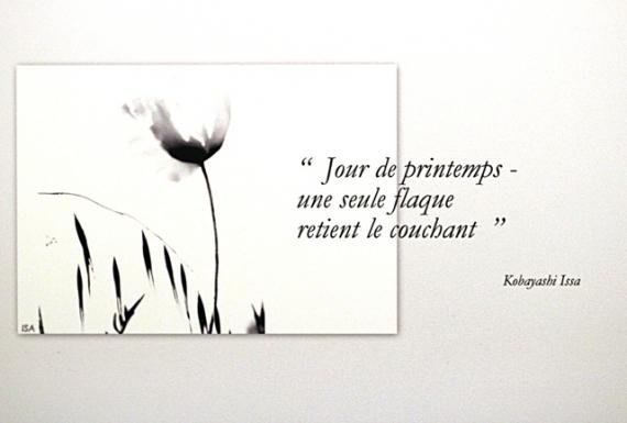 PHOTO fleur noir et blanc haïku pureté Fleurs  - coquelicot noir et blanc