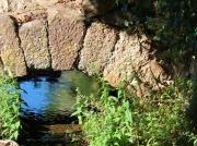 photo paysages pont eau verdure ciel : Un coin de ciel dans l'eau