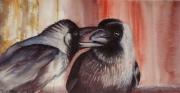 tableau animaux oiseau aquarelle choucas carnet voyage : carnet de voyage en Inde