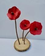 deco design fleurs coquelicot rouge fleur nature : Trio de coquelicots