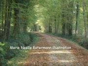 tableau aube foret bois automne : FORET D ORIENT