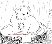 dessin animaux chat panier : CHAT DANS SON PANIER