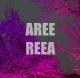 site artistes - Aree Reea