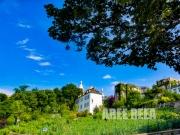 photo paysages montmarte paris vignes paysage : Montmartre - Les Vignes