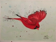 tableau animaux : Cardinal rouge