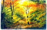 tableau paysages aquarelle drouot : 1 sous bois  coloré 09