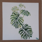 tableau fleurs : Plante verte