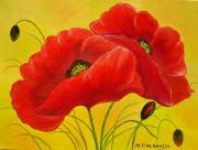 tableau fleurs coquelicots fleurs provence rouge : Coeurs de Provence