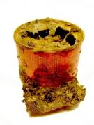 photo nature morte tomate boite de conserve sature souvenir : Conserve