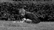 photo personnages enfant jardin paris fleur : fleur de l'âge 2