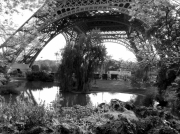 photo paysages tour eiffell eau paris vegetations : Coulisses