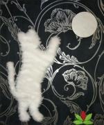 autres animaux tissu chat lune : Chat essayant d'attrapper la lune