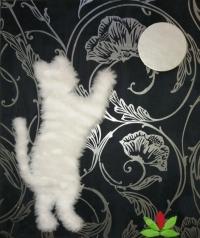 Chat essayant d'attrapper la lune