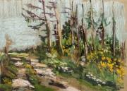tableau paysages foret sentier : Mirwart