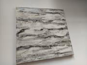 tableau abstrait blanc arbre bouleau relief : Ecorce