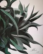 tableau nature morte plante tropicale zen nature morte aloe : Plante tropicale