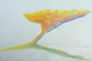 tableau paysages paysage ciel arbres orange : PIN ORANGE